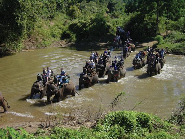 Wie in alten Zeiten - Elefantentrekking