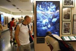 Inhaltlich und visuell eine beeindruckende Ausstellung