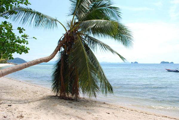 Der Traum - Die Insel - Koh Samui
