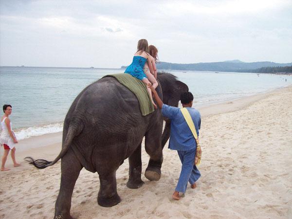Kindergeburtstag am Strand - Vollstress für die Babyelefanten