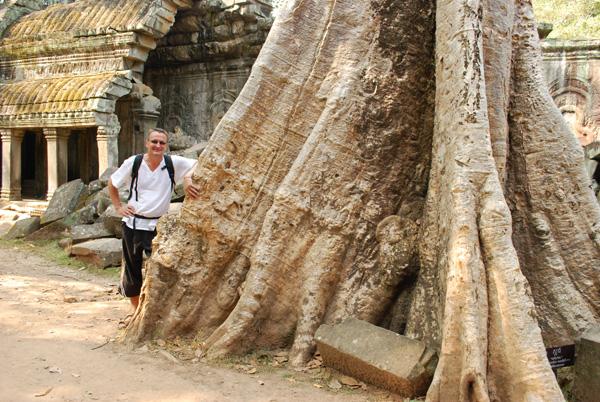 Übersichtliche Verhältnisse: Autor und Baum