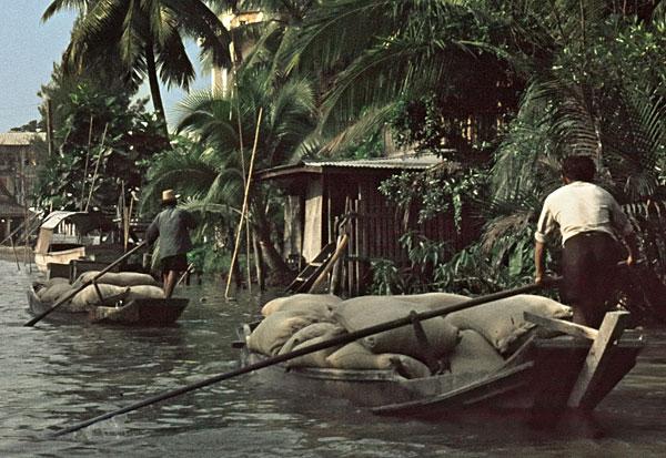 1966. Transport von vollen Säcken in Booten