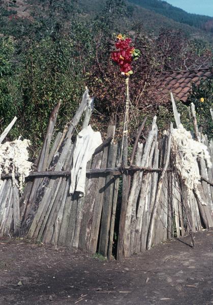 Im Araukanerland das streng abgeschirmte Haus der Machi.