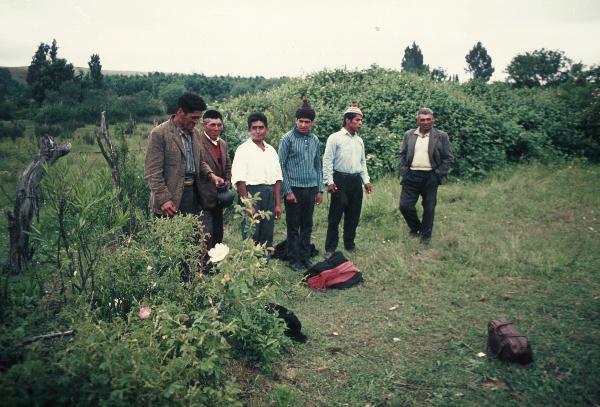 Ngillatun, Die Vortänzer bereiten sich auf ihren Auftritt vor