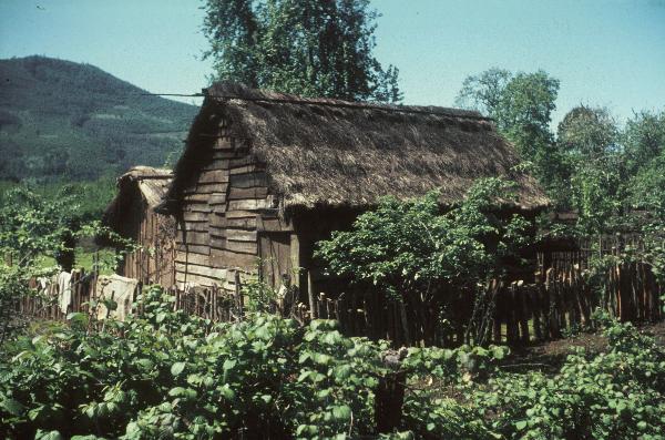 Mapuche. Wohnstätte: Ruca, rundlich oder rechteckig, mit Binsen gedecktes Haus einer Mapuchefamilie