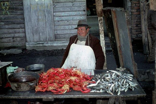 Krebse und Fische