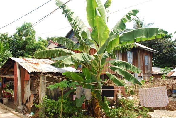 Leben mit den Khmers