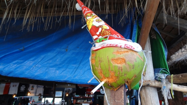Kokosnuss mit Weihnachtsmütze
