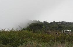 Nebel in den Bergen. Die Hitze der Küste ist hier nicht zu spüren.